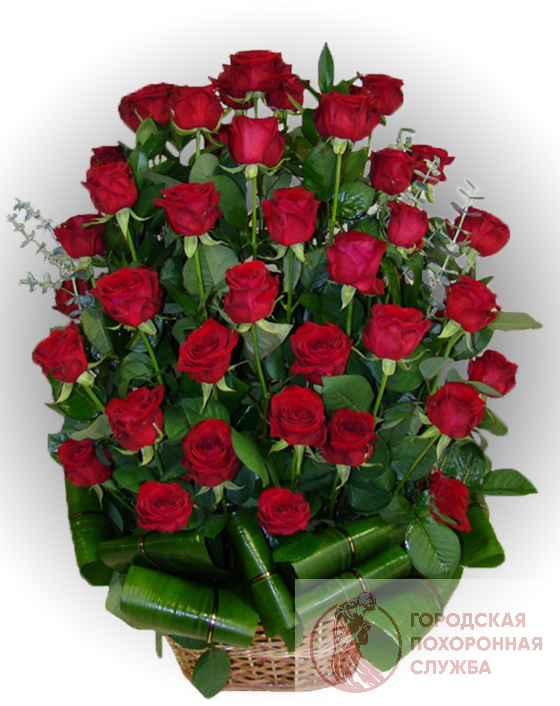 Ритуальная корзина из живых цветов ЖК №13