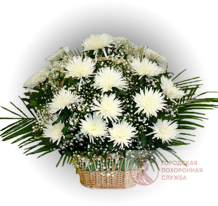 Ритуальная корзина из живых цветов ЖК №16