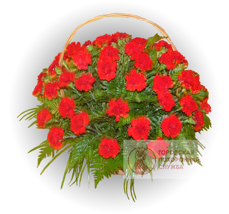 Ритуальная корзина из живых цветов ЖК №29